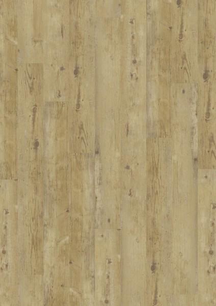 Vinylboden zum Kleben Wormy Light Oak