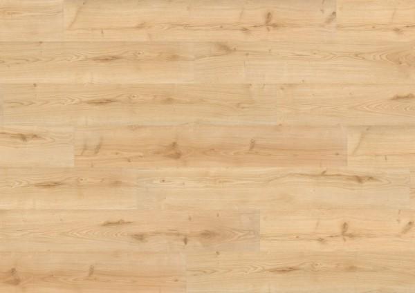 Wineo 1000 Bioboden zum Klicken Garden Oak PLC005R