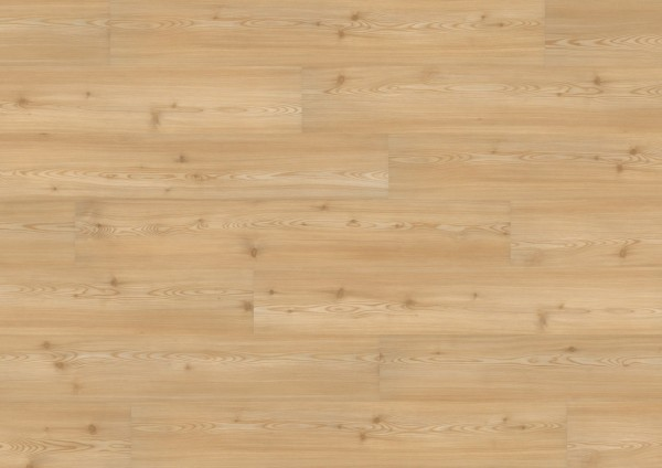 wineo-bioboden-1000-zum-kleben-carmel-pine-pl048r
